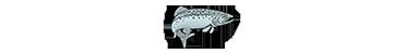 Glanrhyd Snowdon Cottage Logo